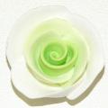 Blume Fimo Rosen grün-weiss